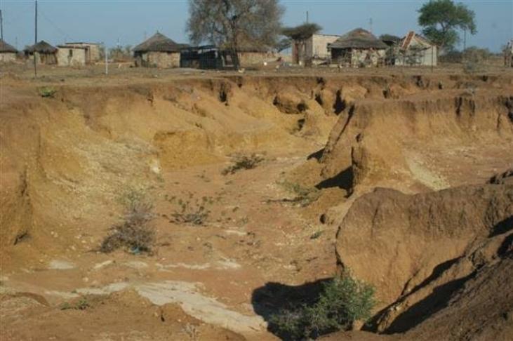Community Led Actions For Climate Change Zimbabwe