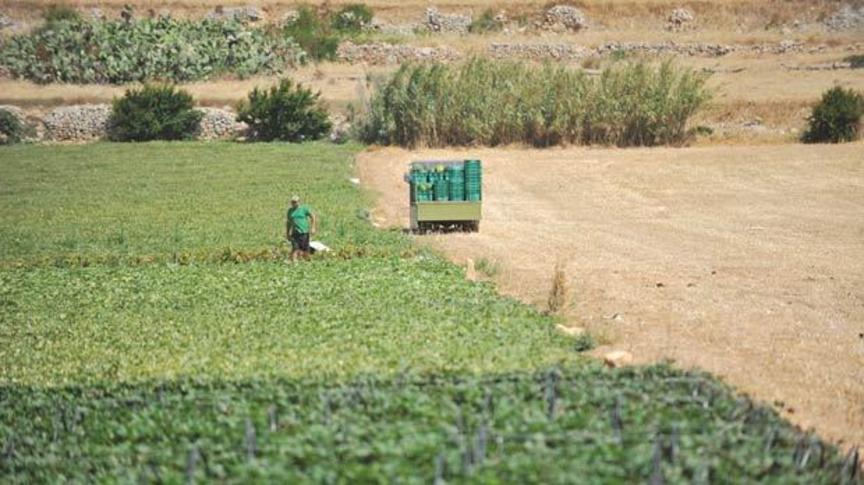 AGRICULTURAL LAND: A SCHEME : ' RIKONOXXIMENT TAL -QBIELA'