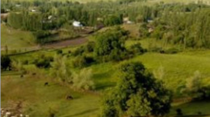 Определение приоритетов в Кыз-Кѳлском АА