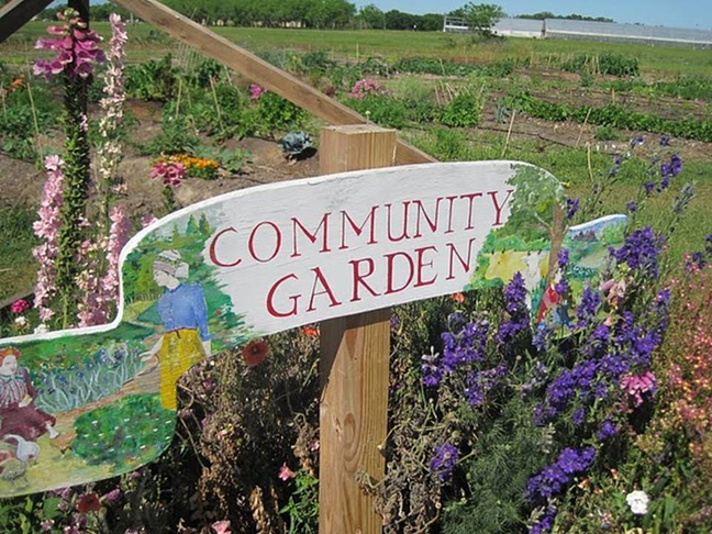 Rosneath Community Garden
