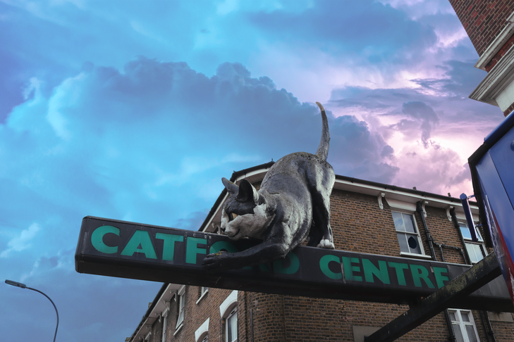 A Site to Gather Ideas on How to Make Catford Better