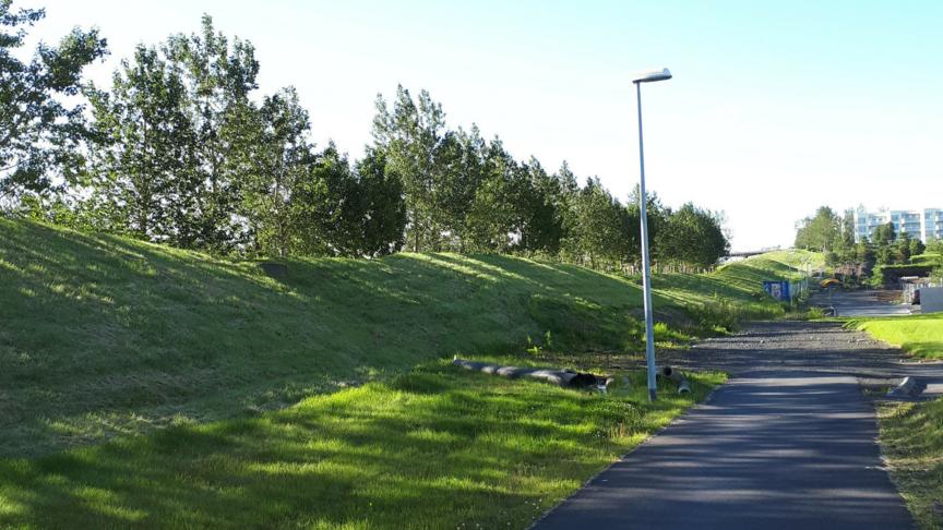 Gróðursetja tré á hljóðmön við kringlumýrabraut