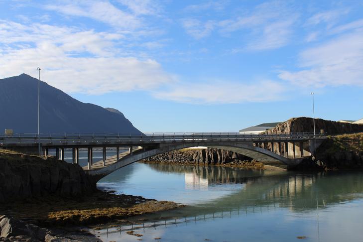 Falleg lóð við íbúðarhús