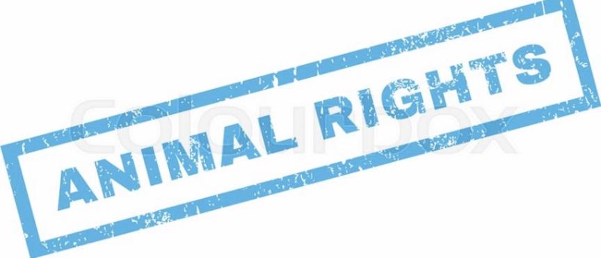 VOTE PN : VOTE ANIMAL RIGHTS