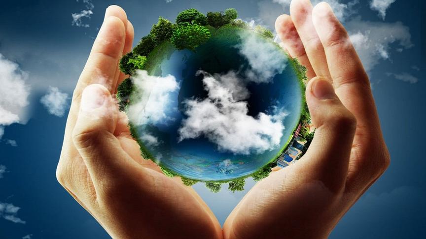 Экологические и социальные меры безопасности ППМС