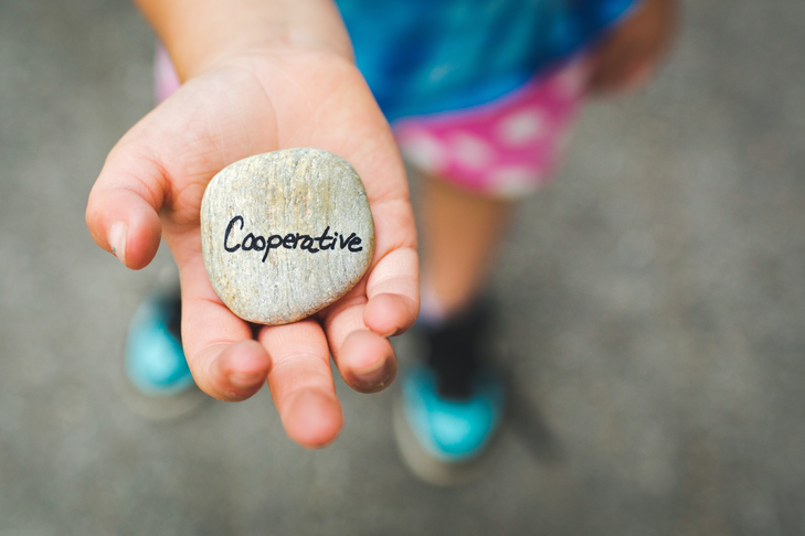 Create cooperatives to share assets