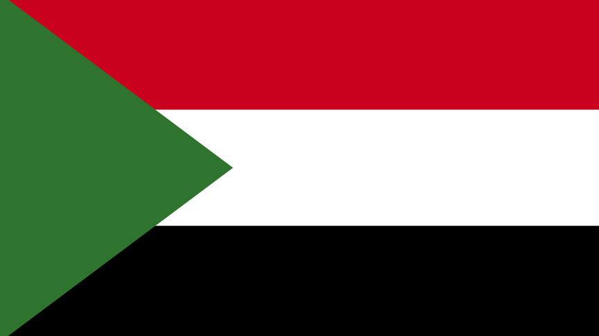 DEMO - Sudan Economic Solutions