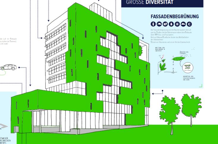 Cradle-to-Cradle-Prinzipien bei öffentlichen Gebäuden