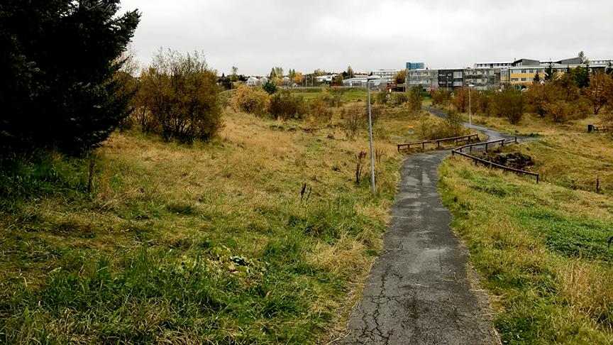 Fleiri Bekki við tjörnina og Seljakirkju