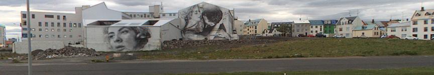 Hreinsa svæðið bakvið Seljaveg 2