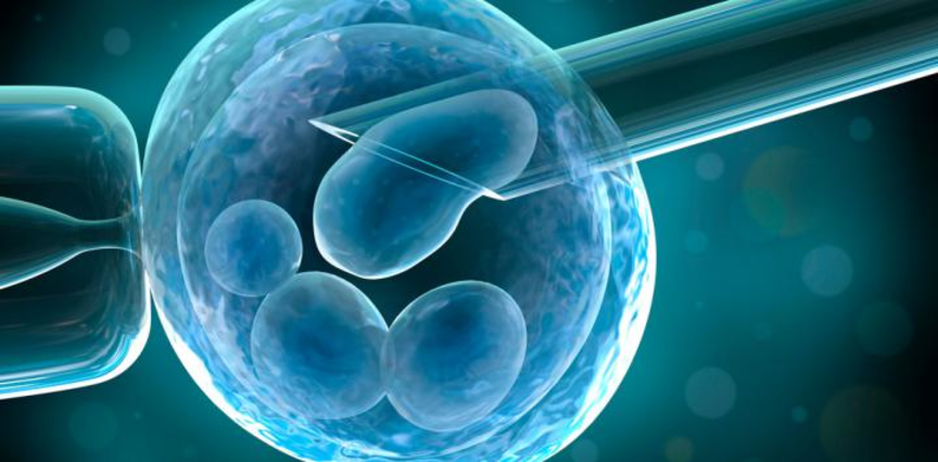 Government subsidizing stem cells of new borns