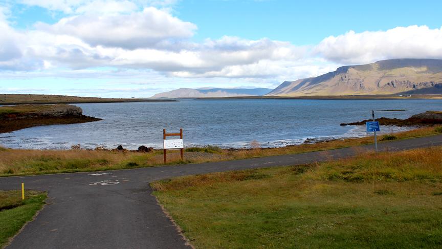 Gróðursetja tré og runna meðfram strandstíg við Staðahverfi