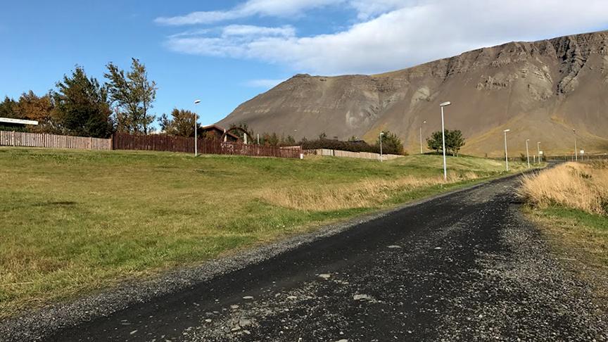 Skjólgróður milli Víkurrgundar og Esjugrundar