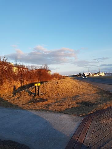 Hljóðmön milli Suðurstrandar og Unnarbrautar