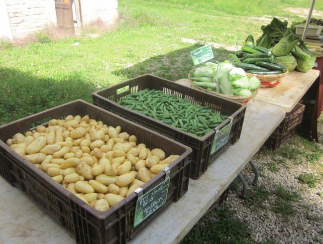 Soutenir et développer l'agriculture biologique et locale