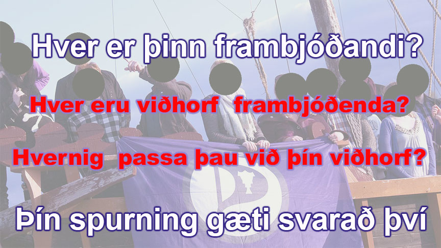 Upplýst val í prófkjörum - Bestu spurningarnar