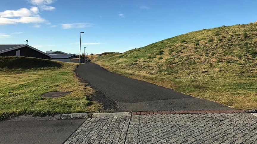 Fleiri trjábeð