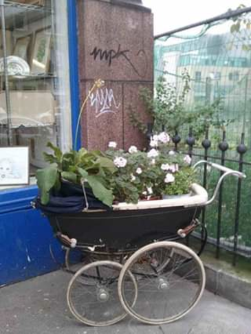 Grow to Eat - Come and grow something to eat - only £450