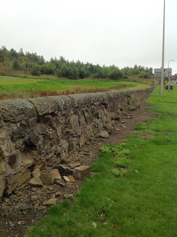 Stone wall in Crossgates between North and Windmill Knowes