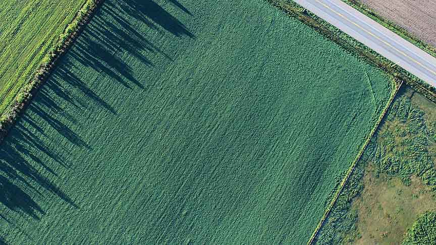 Subsidise rent on farms and agricultural land