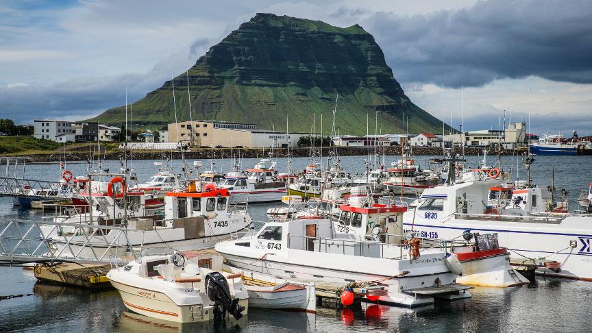 Sjávarútvegur og iðnaður