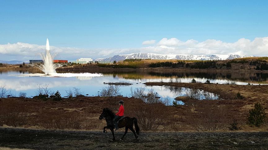 Gosbrunnur í Rauðavatn