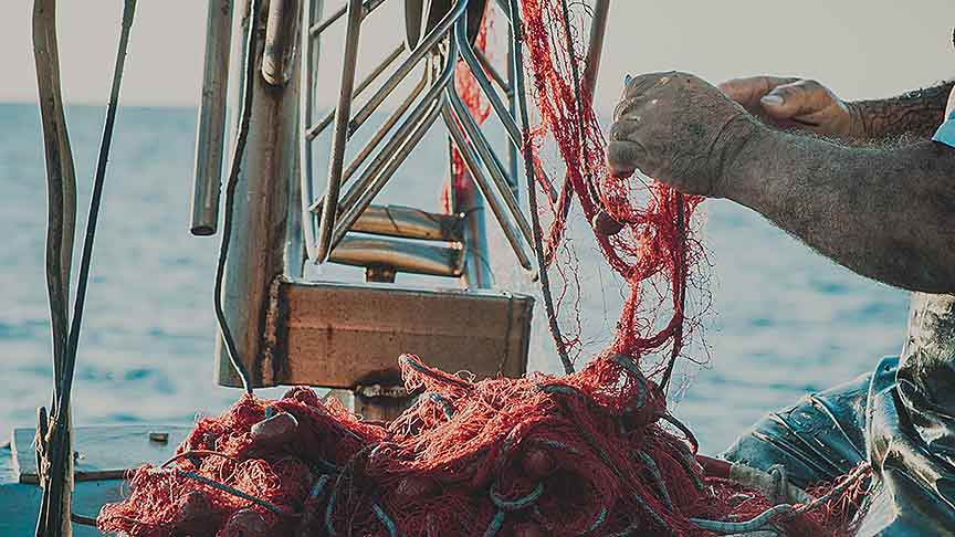 Assist farmers and fishermen to diversify