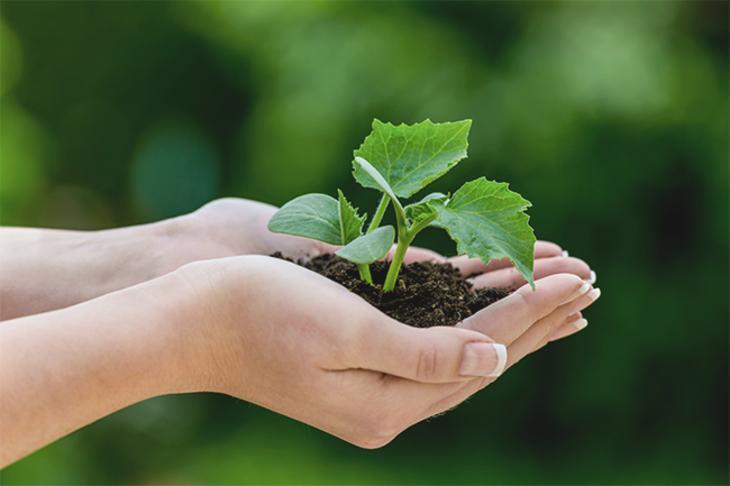 Forbrukerrådet – grønt/etisk forbruk og produksjon