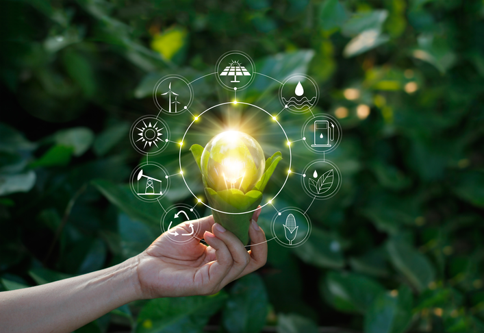 Technological Innovation and the Circular Economy