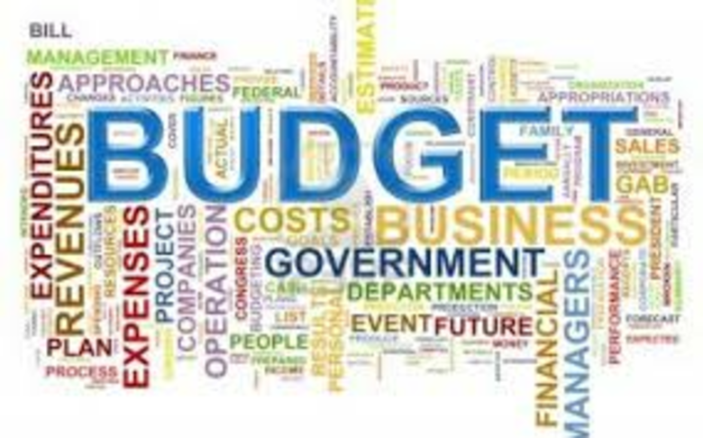 Improve Fiscal Transparency by introducing a Citizens Budget