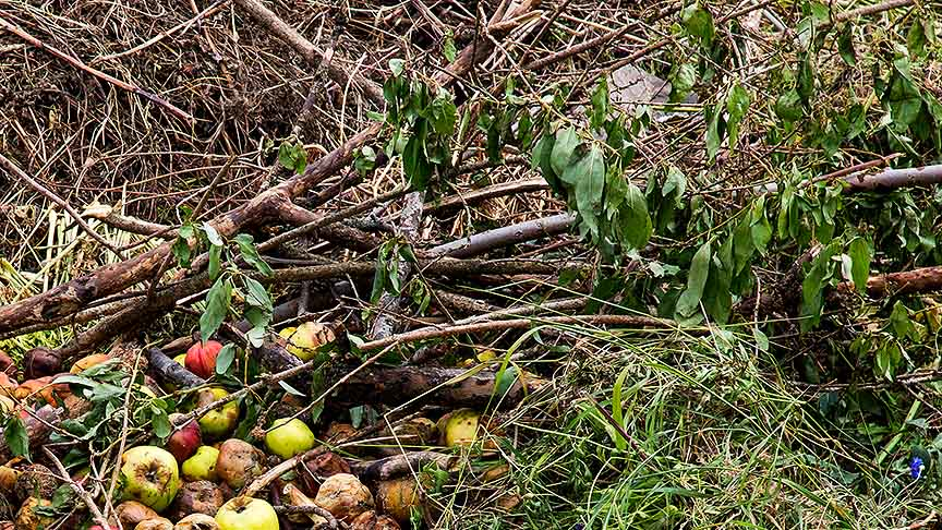 Prepare Agricultural Waste Policy