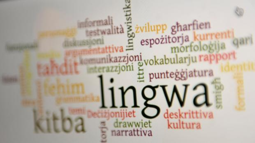 Learning Maltese on language-learning platforms
