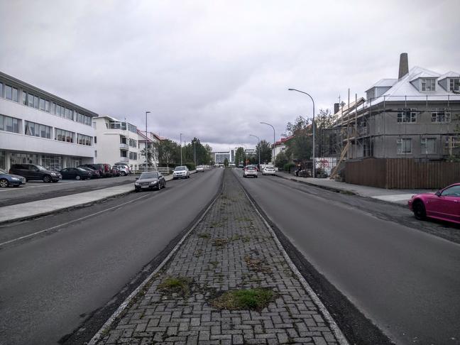 Tré á umferðareyju við Neshaga