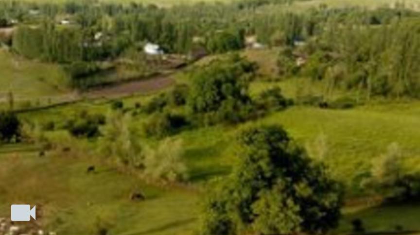 Чоко-Добо айылы