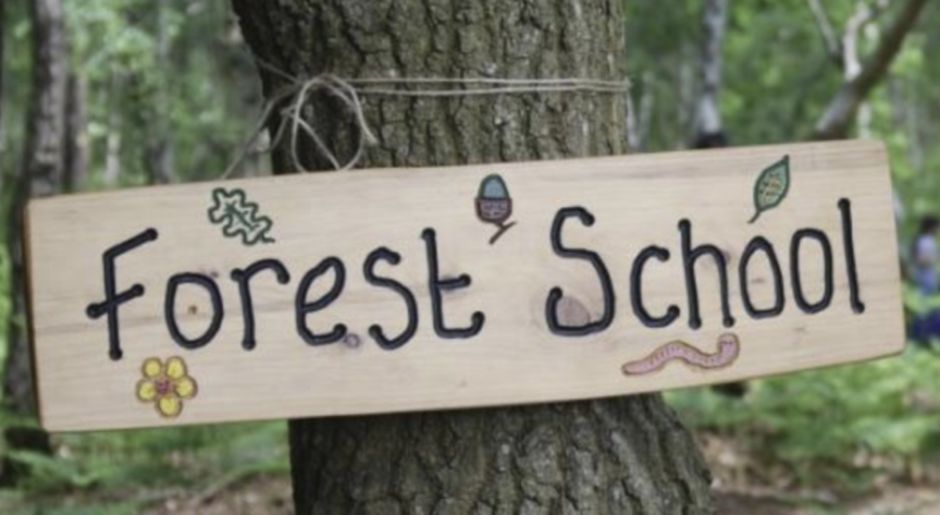 Forest Schools for Adults