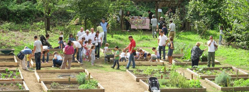 Agricoltura urbana locale