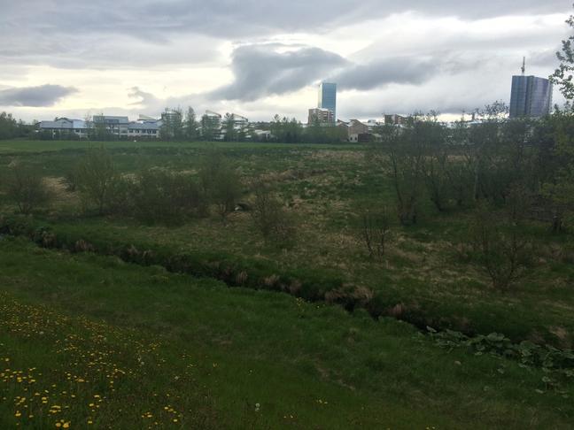 Nýta svæði í kringum brennuna betur t.d. árlegan matarmarkað
