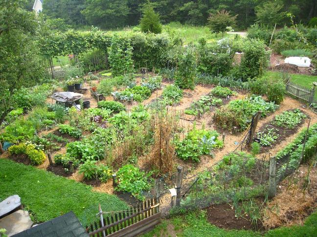 Régie agricole avec école de permaculture