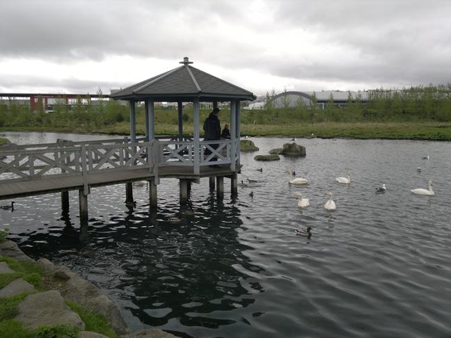 Hljóðmön við Hafnafjarðaveg hjá tjörninni við Kópavogslæk