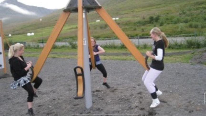 snúningsveifla á leiksvæðið í hverfinu