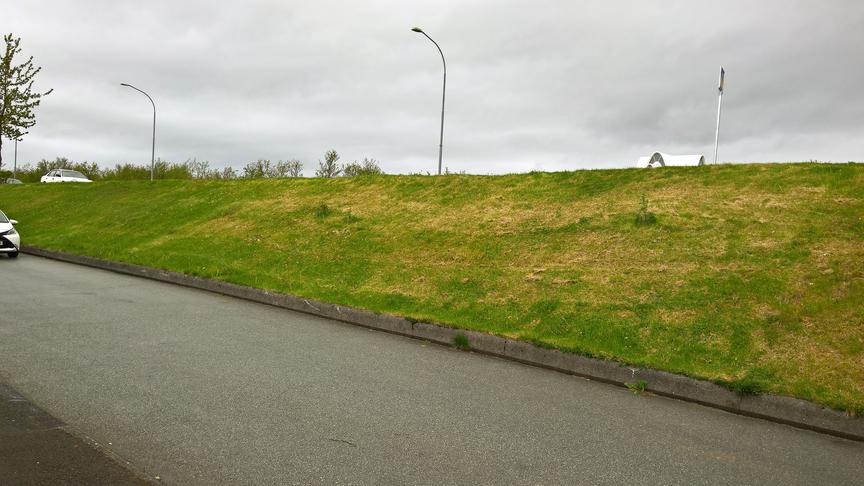 Trjágróður í brekku við Borgarholtsbraut 1 - 11