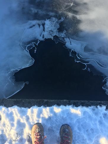 Laga göngustíg í hrauninu á leiðinni að Vífilstaðavatni