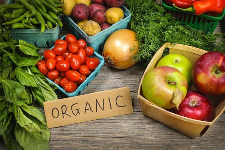 Financial Support for Farms to provide more Organic Food