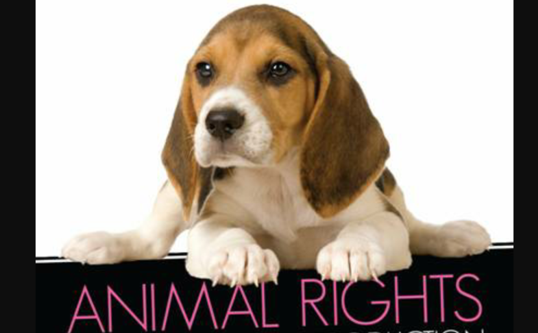 ANIMAL PROTECTION PROPOSALS