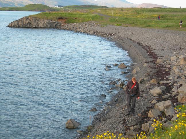 Fræðsluskilti um gróðurfar, fuglalíf og jarðfræði Laugarness